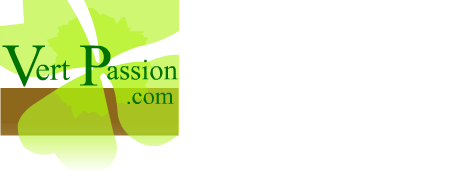 Paysagiste paris et paysagiste 78 yvelines versailles for Entretien jardin orgeval